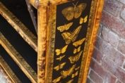 English 19th century bamboo bookcase with butterflies and moths